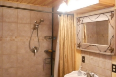 Bathroom - basement 3